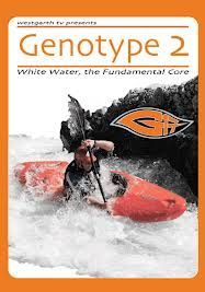 DVD Genotype 2