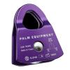 Palm-Prusik-minding-pulley-2020.jpg
