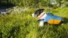 Astral Birddog blue_akce_1.jpg