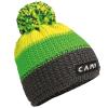 Camp Joe Beanie green.jpg