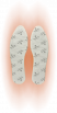 THERM-IC-FOOT-WARMERS-2020-21 vložky do bot.jpgI..png
