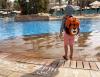 overboard-kids-waterproof-backpack-11-litres-tiger-orange.jpg